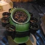 blumentopf helm mit acht toepfen an der seite und einem grossen mittig